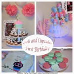 Owls and Cupcakes First Birthday Party